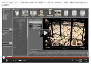 Video Assets Embedded in a Web Page